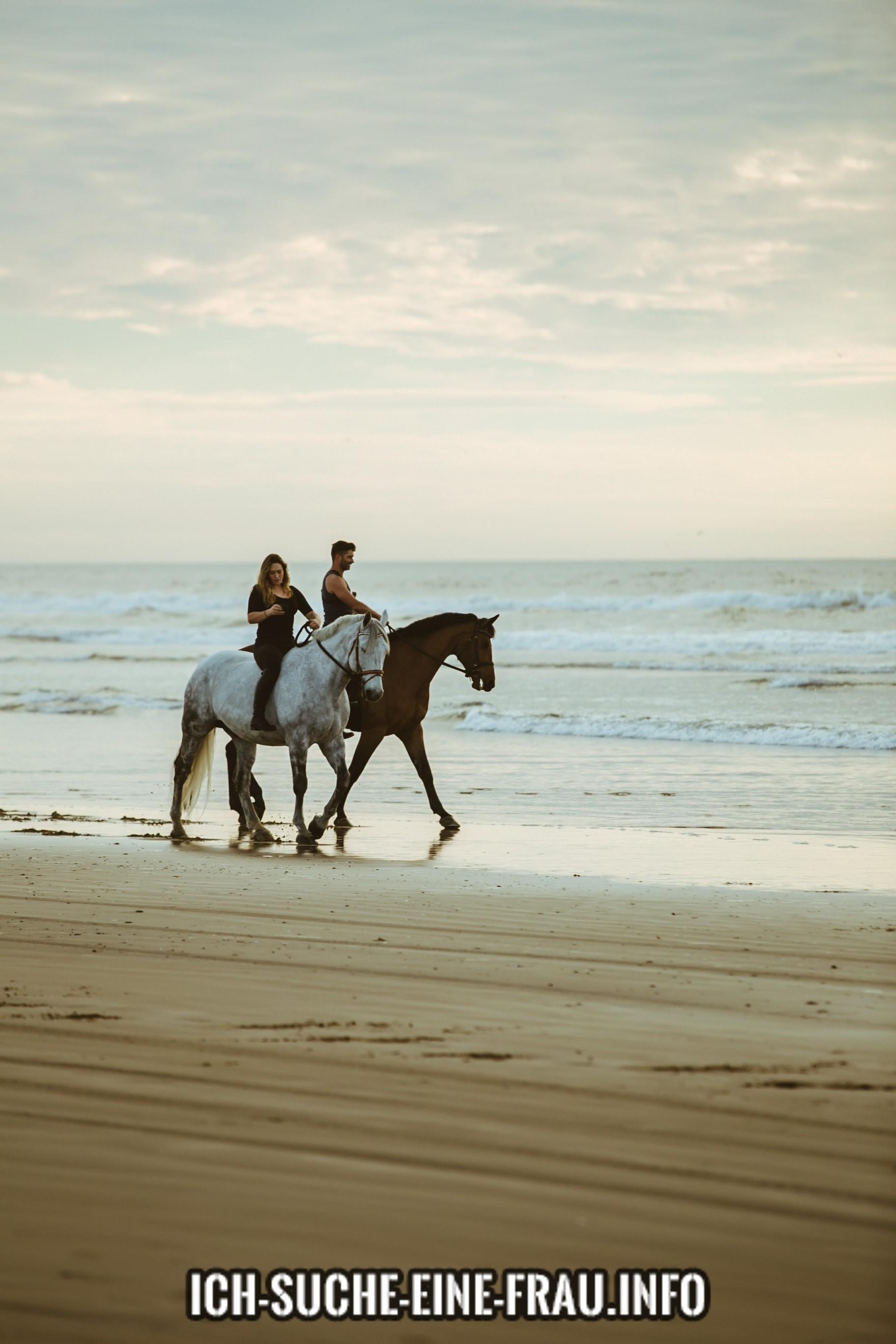 Suche pferdebegeisterte Frau
